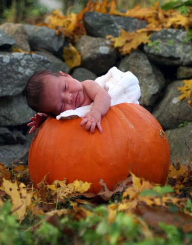 We thank god for our pumpkin so perfect and pristine our cute bostonian pumpkin shell be ripe by halloween